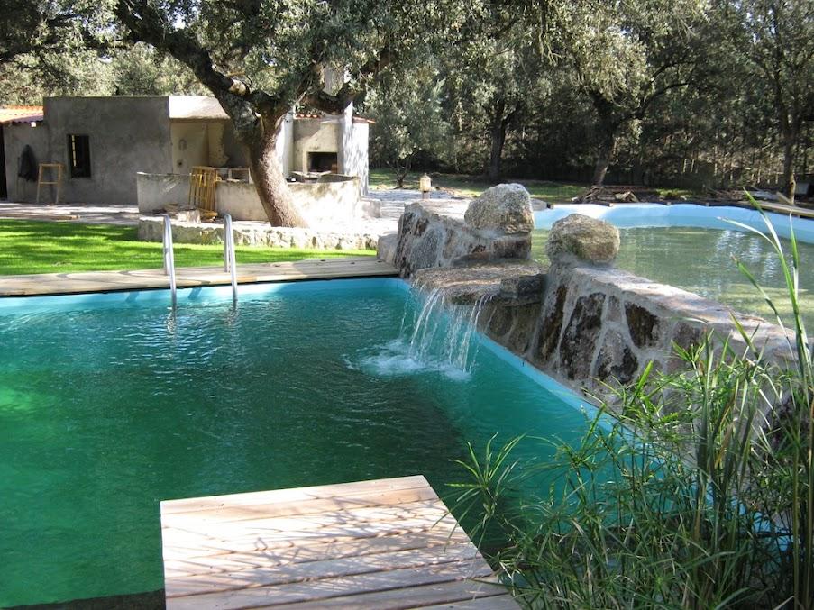 Meglio che al mare piscine naturali con nulla da for Construir piscina natural ecologica