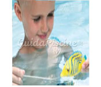 Pesci tropicali mini 1000 piscine for Piscine per pesci