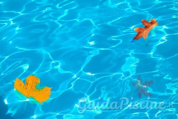 5 ottimi motivi per costruire la tua piscina in autunno
