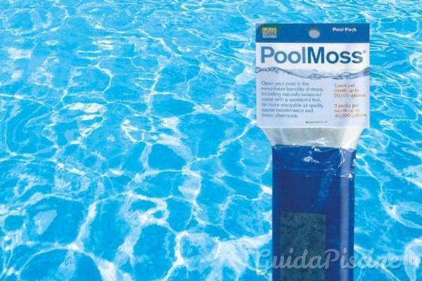 Come purificare l'acqua con il muschio naturale - GuidaPiscine.it