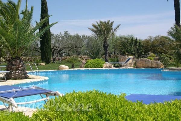Le migliori piante intorno alla piscina - Piante per bordo piscina ...