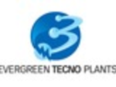 Evergreen Tecno Plants